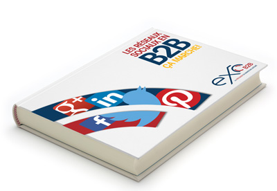 reseaux-sociaux-b2b-ebook